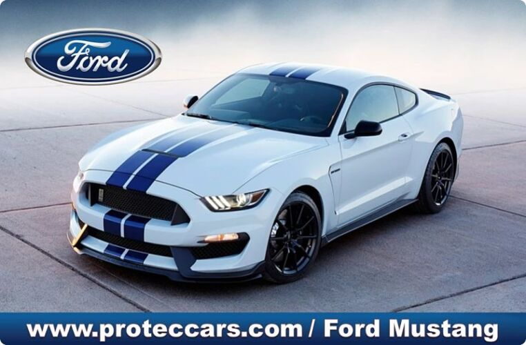 Ford Mustang P