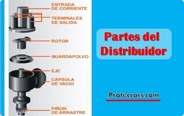 Partes del distribuidor